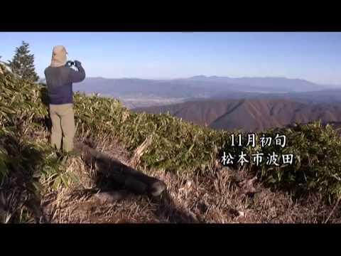 【Views】『鉢盛山再訪』8分~こだわりの作者が自分撮りを極めるために今日も山に挑む