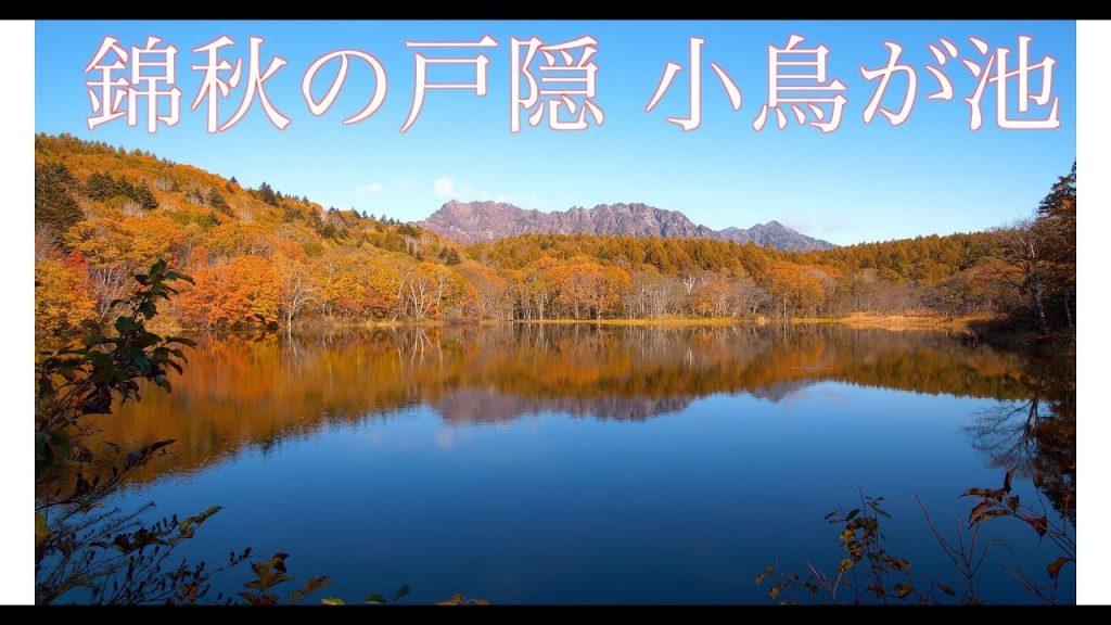 【Views】『錦秋の戸隠 小鳥が池』3分31秒~凪いだ池面にミラーリングされる風景は自然が作り出す緻密なモザイク。その光景に、見る者は心洗われるよう