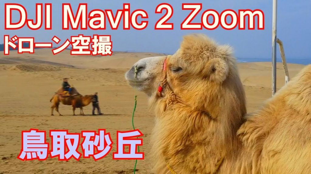 【Views】『【絶景ドローン空撮】鳥取砂丘』3分9秒〜音楽とのシンクロ感、いろいろな画角の空撮、360度方向からのショット等、ドローンの性能をフルに活かした撮影に心躍る