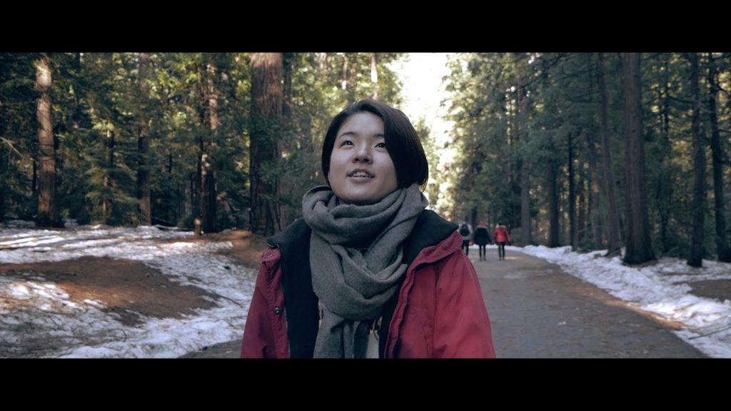 【Views】『Yosemite Travel Video』1分41秒~広大な面積を誇るアメリカ、ヨセミテ国立公園をミクロの視点から描くという逆転の発想