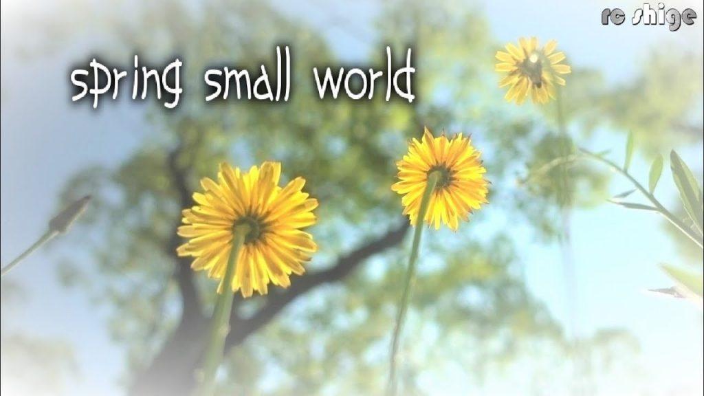 【Views】642『SPRING SMALL WORLD』1分52秒〜公園の片隅の一角で展開する虫たちの小さな世界をスローモーションカメラが覗く