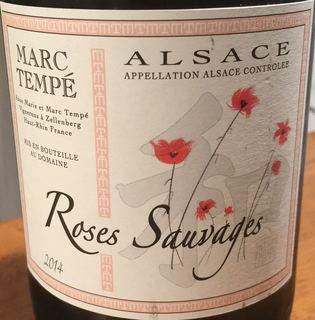 Marc Tempé Roses Sauvages