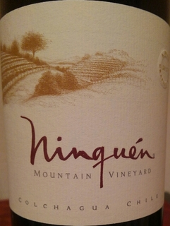 Ninquen Mountain Vineyards