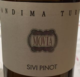 Movia Turno Sivi Pinot