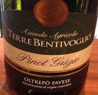 Terre Bentivoglio Pinot Grigio