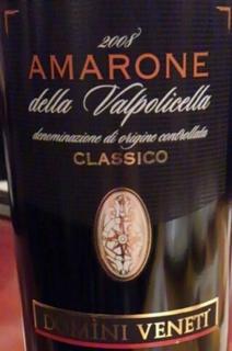 Domini Veneti Vigneti di Jago Amarone della Valpolicella Classico
