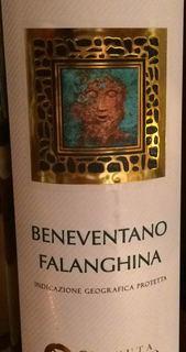 Tenuta Scuotto Beneventano Falanghina(テヌータ・スクオット ベネヴェンターノ ファランギーナ)