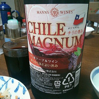 Manns Wines Chile Magnum チリの恵み 赤