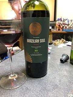 Brazilian Soul Premium Selection Tannat