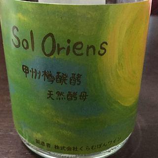 くらむぼんワイン(山梨ワイン) Sol Oriens 甲州樽醗酵