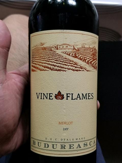 Budureasca Vine in Flames Merlot