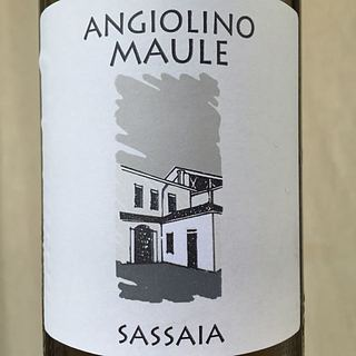 Angiolino Maule Sassaia(アンジョリーノ・マウレ サッサイア)
