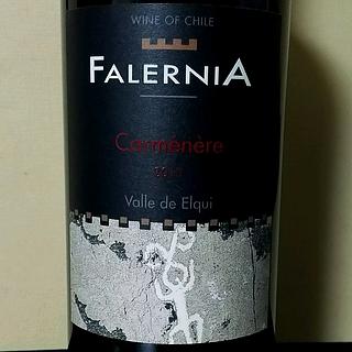 Falernia Carménère(ファレルニア カルムネール)