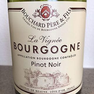 Bouchard Père & Fils Bourgogne Pinot Noir La Vignée
