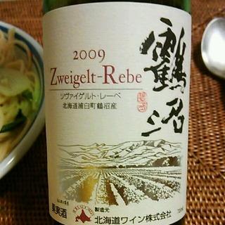 北海道ワイン 鶴沼 Zweigelt Rebe