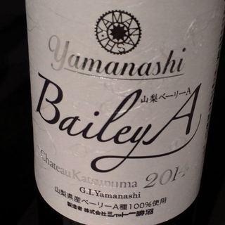 Ch. Katsunuma Bailey A