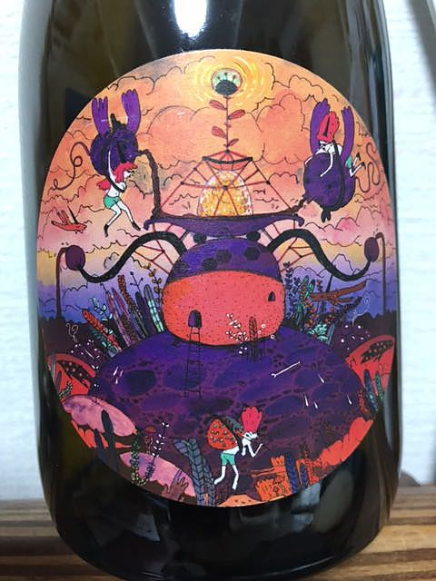 Patrick Sullivan Fruit of the Sky Pinot Noir