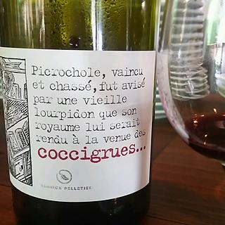 Yannick Pelletier Coccigrues