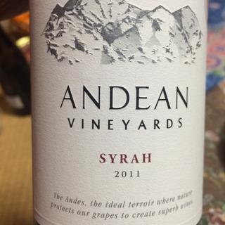 Andean Vineyards Syrah