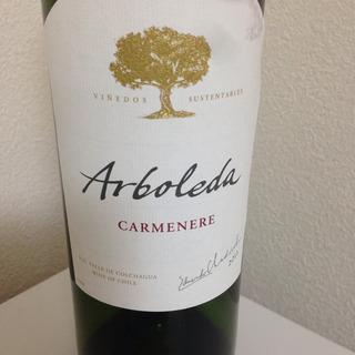 Arboleda Carmenere