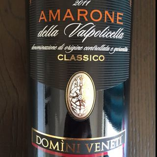 Domini Veneti Amarone della Valpolicella Classico