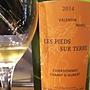 Valentin Morel Les Pieds Sur Terre Chardonnay Champ d'Aubert(2014)