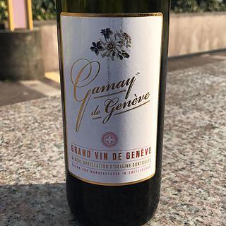 Chasselas de Genève