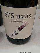 575 ウーヴァス・デ・カンブリコ(2014)
