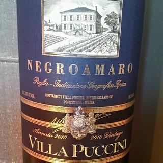 Villa Puccini Negroamaro