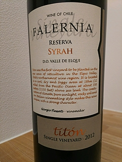 Falernia Syrah Reserva Titón Single Vineyard