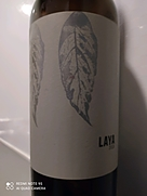 ラヤ(2019)