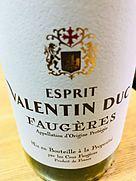 Esprit Valentin Duc Faugères