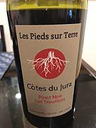 Valentin Morel Les Pieds Sur Terre Pinot Noir Les Trouillots(2016)