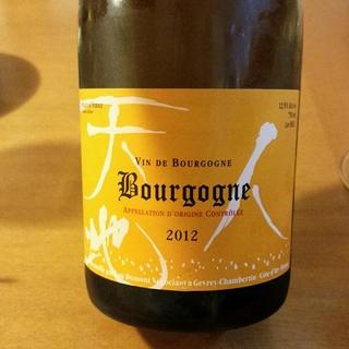 Lou Dumont Bourgogne Blanc(ルー・デュモン ブルゴーニュ・ブラン)