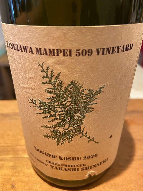 Kanezawa Mampei 509 Vineyard Dogged Koshu 2020(金沢字万平山509畑 甲州)