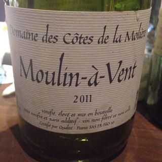 Dom. des Côtes de la Molière Moulin à Vent