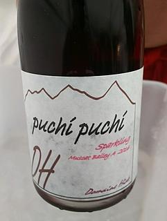Dom. Hide Puchi Puchi