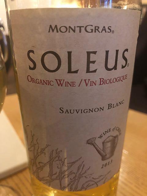 Soleus by MontGras Cabernet Sauvignon