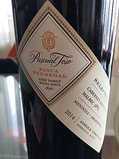 Pascual Toso Finca Pedregal Single Vineyard