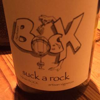 Sylvain Bock Suck a Rock