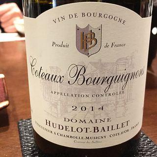 Dom. Hudelot Baillet Coteaux Bourguignons