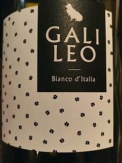 Giulio Straccali Galileo Bianco(ジュリオ・ストラッカーリ ガリレオ ビアンコ)