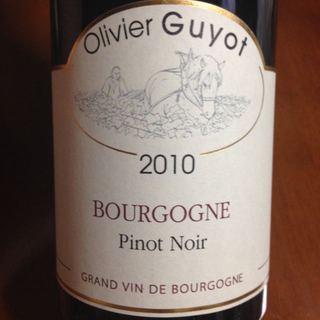 Olivier Guyot Bourgogne Pinot Noir