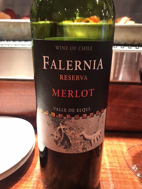 Falernia Merlot Reserva