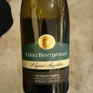 Terre Bentivoglio Vigna Angelica Pinot Grigio