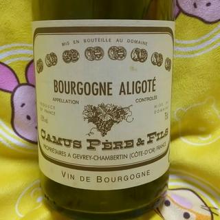 Camus Père & Fils Bourgogne Aligoté
