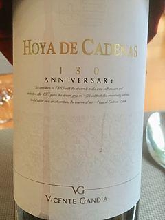 Vicente Gandia Hoya de Cadenas 130 Anniversary Tinto(ビセンテ・ガンディア オヤ・デ・カデナス 130 アニバーサリー ティント)