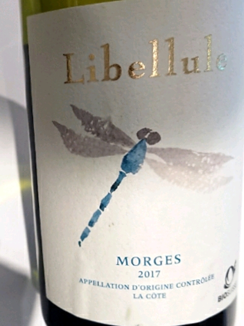 Libellule Morges