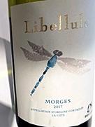 Libellule Morges(2017)