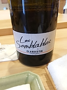 Clandestin Les Semblables
